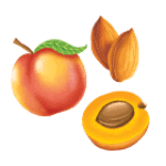 Peach-Apricot-Almond
